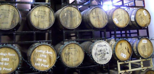 Dogfish Head Tips for Aging Beer